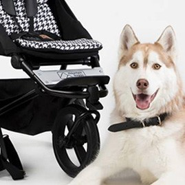 Soldes Mountain Buggy